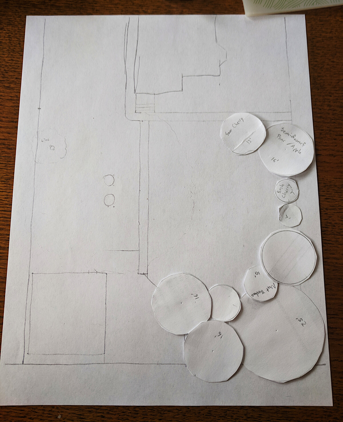 Map of the back area of the lot with loose circles of paper laid out