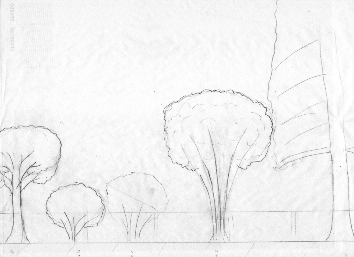 A sketch of the rain garden layout from the side