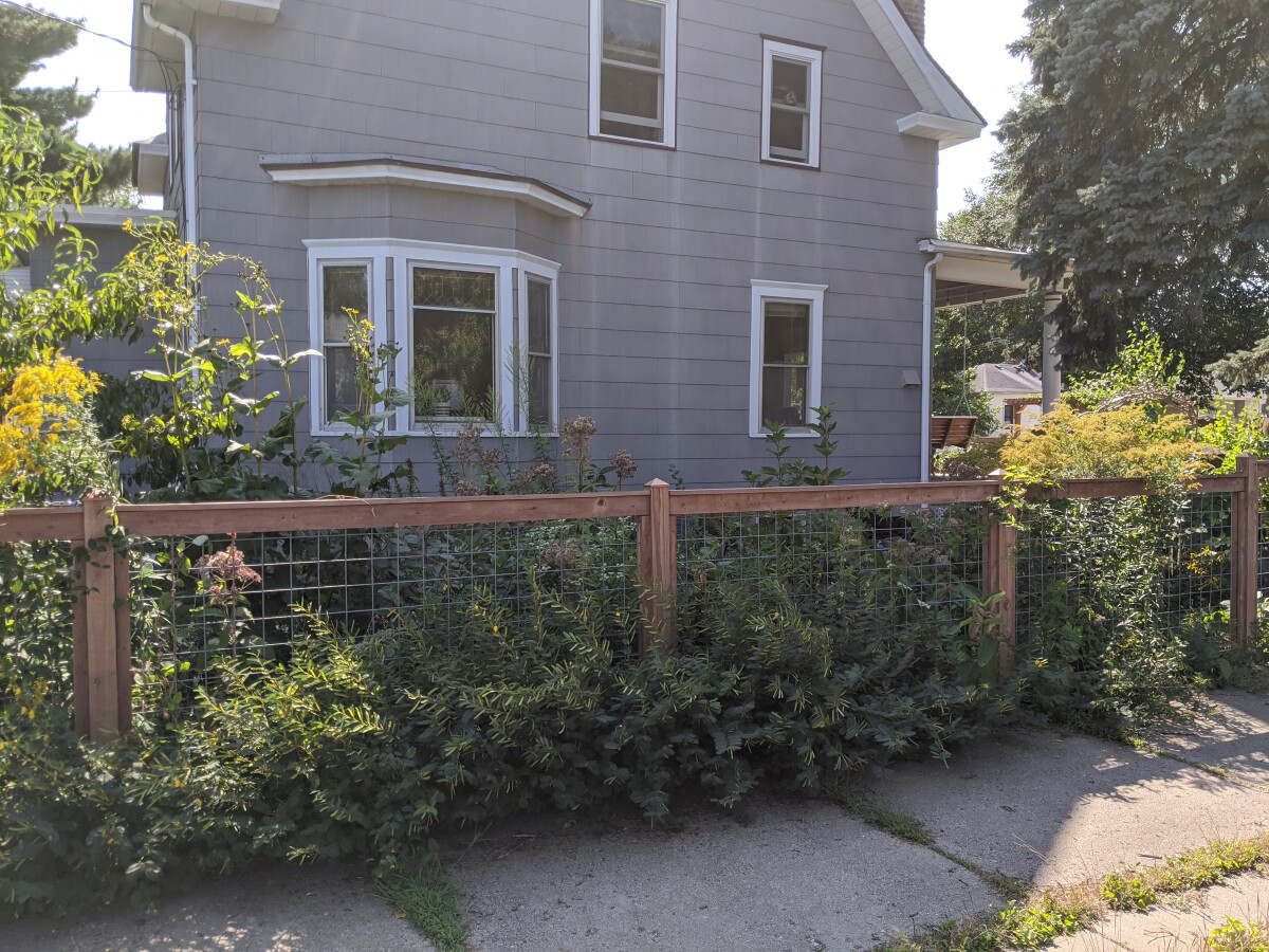 View of the rain garden from the street